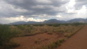 Empire Ranch 2